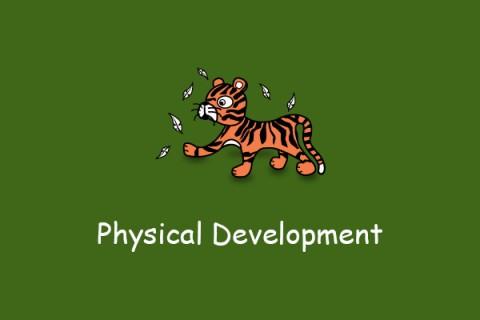 Physical Development