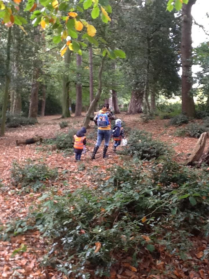 Sutton Park 4